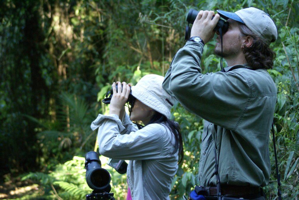 Argentina - 1584 - Yacutinga Lodge - Iguazu - Bird watching with Binoculars