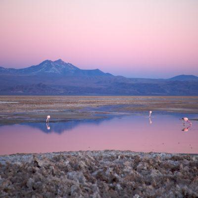 Chile Atacama Community Discovery