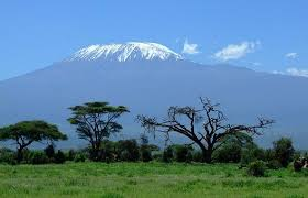 Kenya - 12890 - View of Kilimanjaro from Amboseli - Grasslands