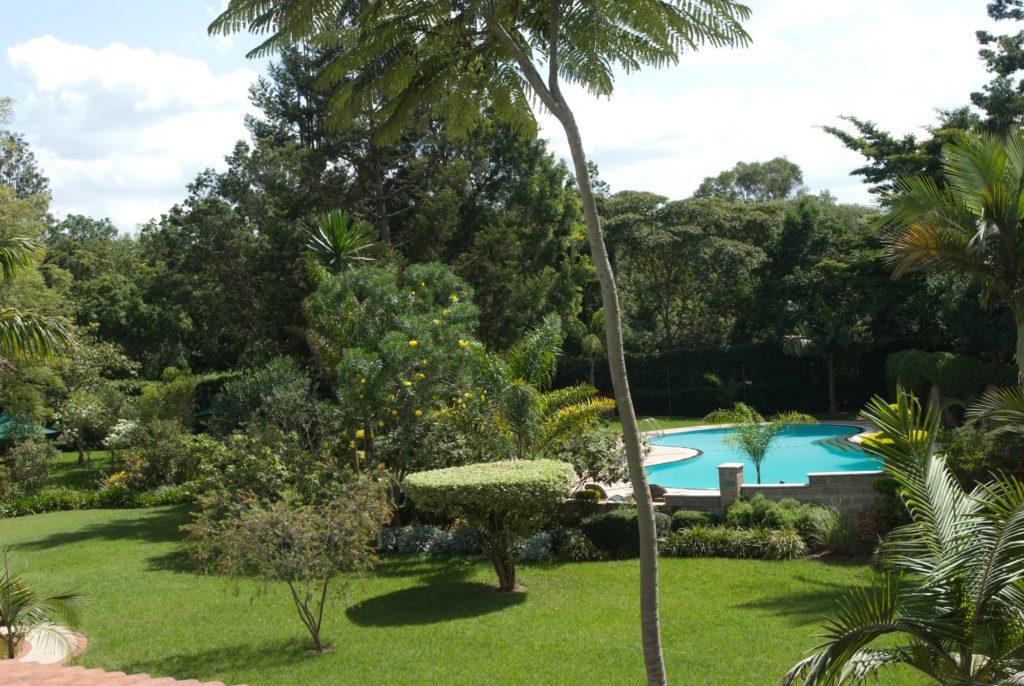 Kenya - Nairobi - House of Waine - Swimming Pool and Gardens