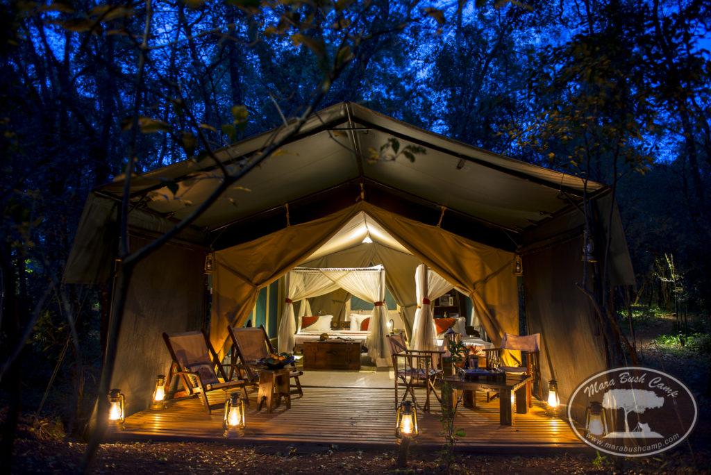 Kenya - Masai Mara - 12890 - Mara Bush Camp at night