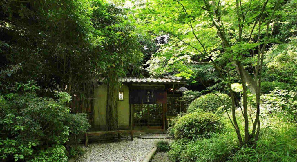 Japan - Tokyo - 18261 - Hotel garden