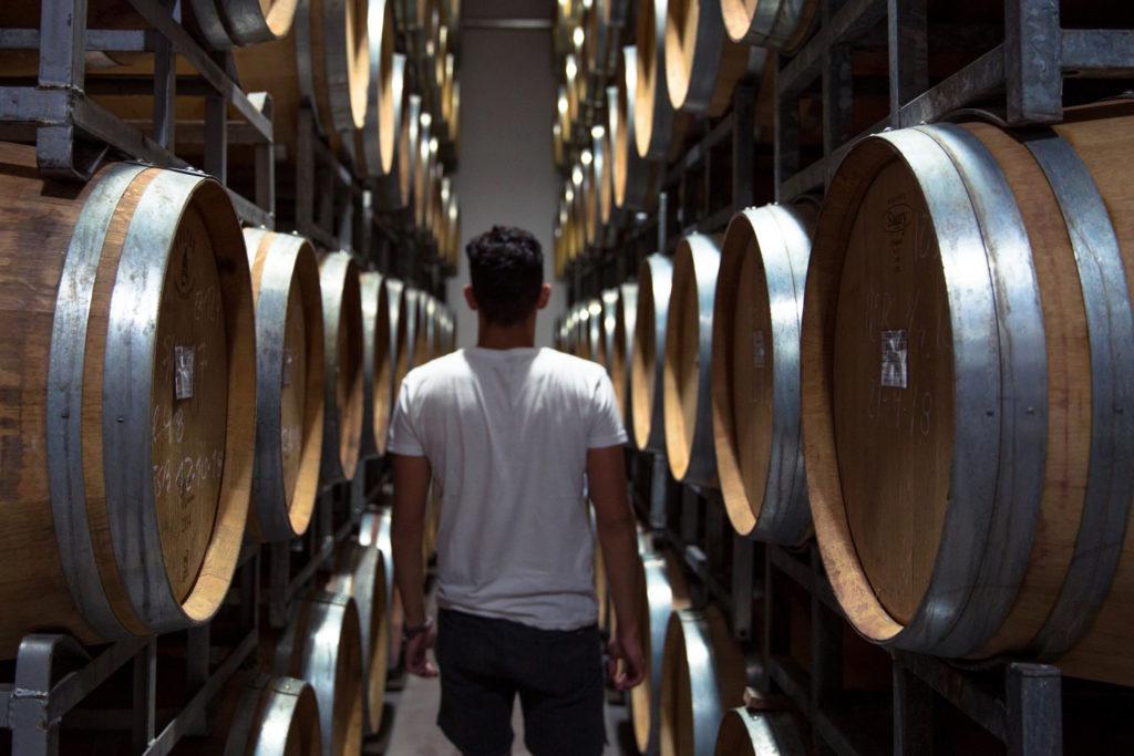 Argentina - 1584 - Wineries at Cafayate - Northwest - Wine Barrel Storage Room