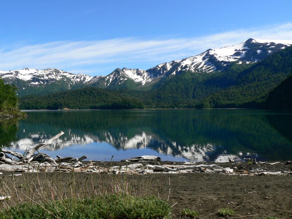 Chile - Pucon - 1560 - Conguillio Lake Nature Adventure