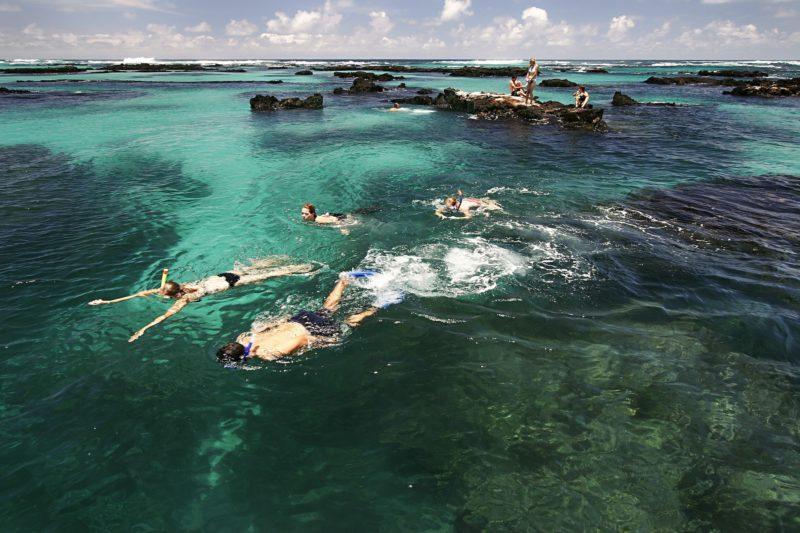 Ecuador - 1557 - Ecuador Galapagos Honeymoon - Isabela Tunnels snorkeling