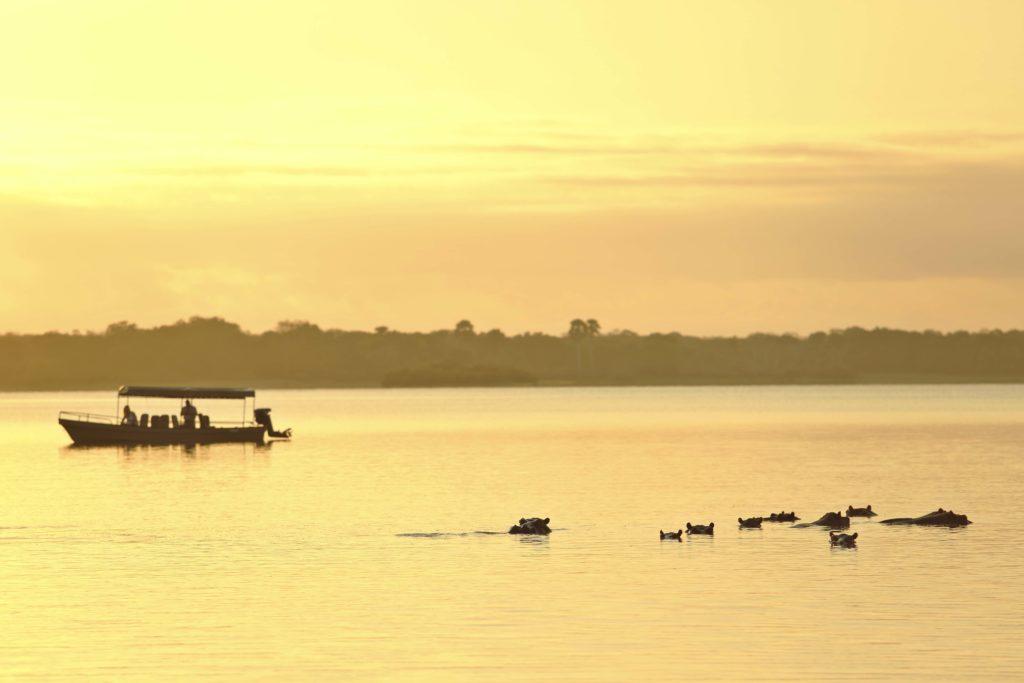 Tanzania - 17467 - asilia roho boat - sunset