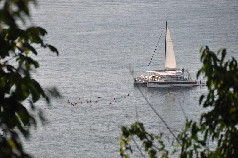 Costa Rica Tortuguero and Rainforest - 10024 - Mi Antonio Ship Sail Adventure
