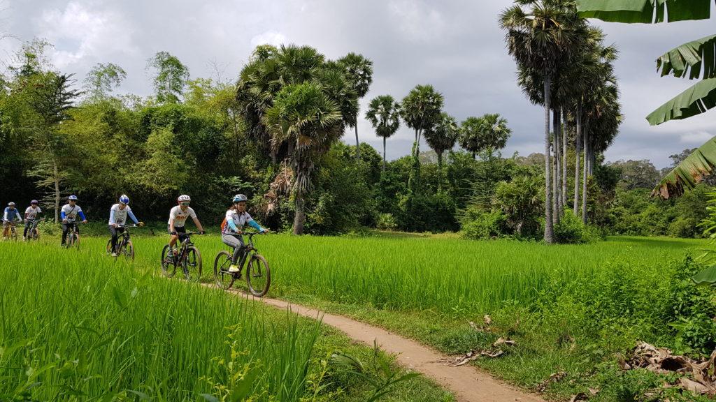 Cambodia - 18260 - Angkor Cycling