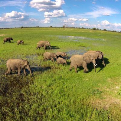 Zimbabwe Luxury Adventure