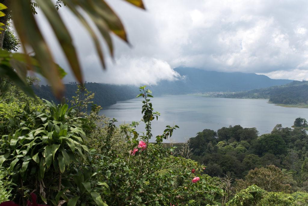 Indonesia - 18268 - Ubud