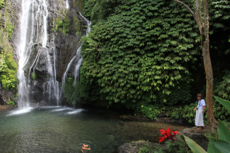 Indonesia - 18268 - Banyumala Waterfall