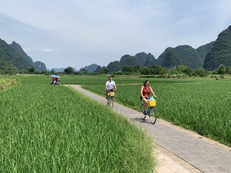 China - 18262- Cycling in Yangshuo - Biking through Fields