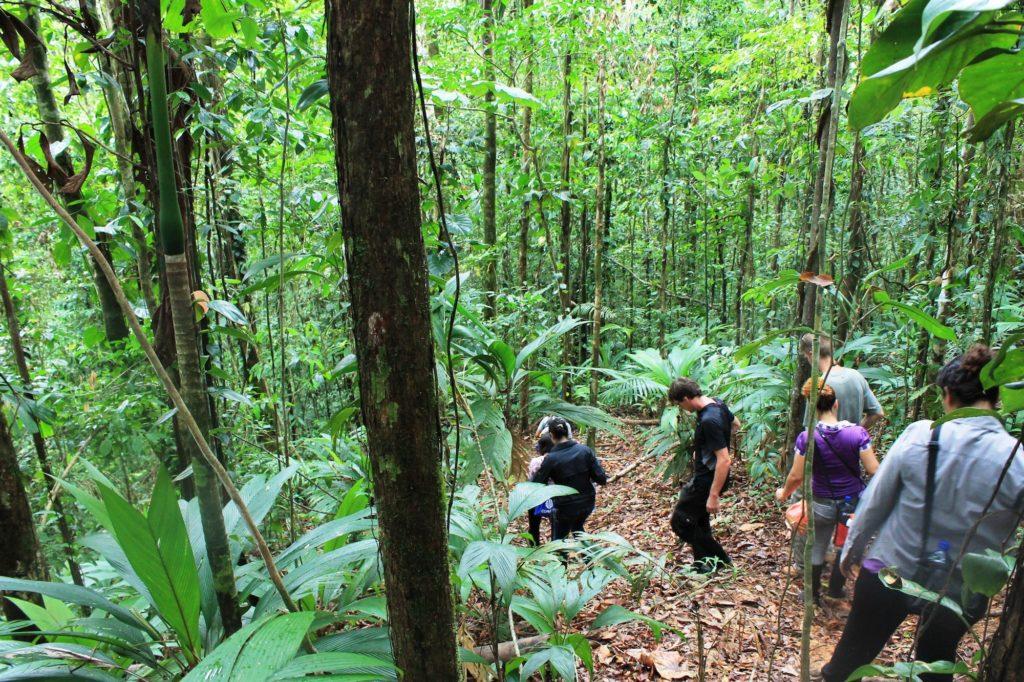 Nicaragua - 10024 - Jungle River Adventure - Indio Maiz
