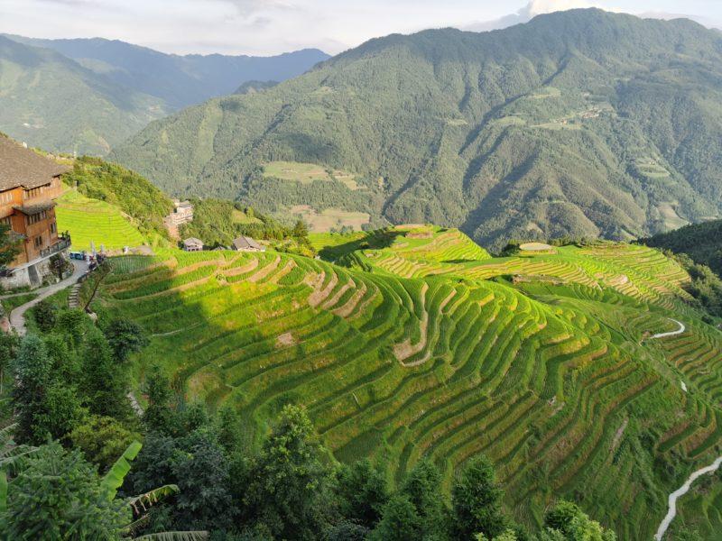 China - 18262- Longji Rice Terrace - Mountain view of landscape