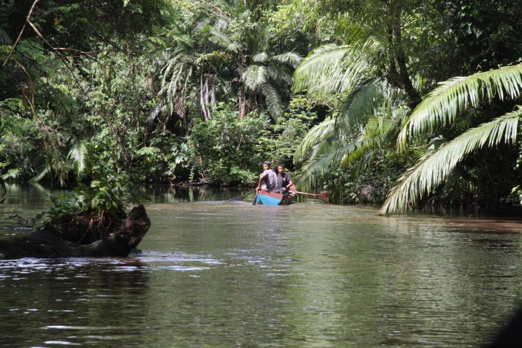 Nicaragua - 10024 - Jungle River Adventure - Solentiname Kayaking