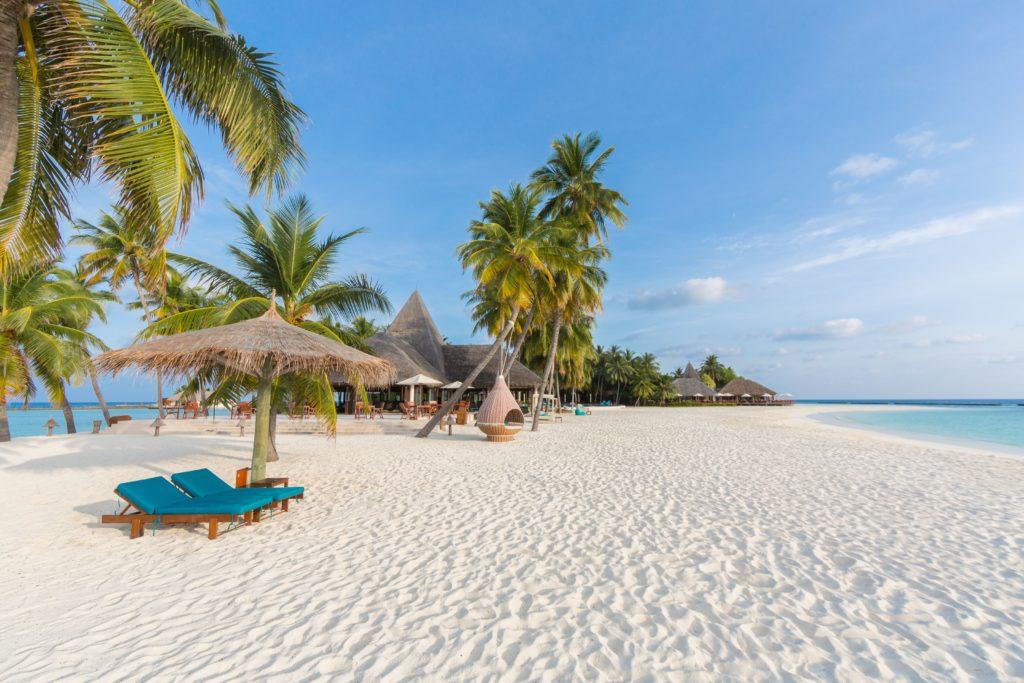 Maldives - North Ari Atoll - 1567 - Veligandu Island Resort - White sandy beach