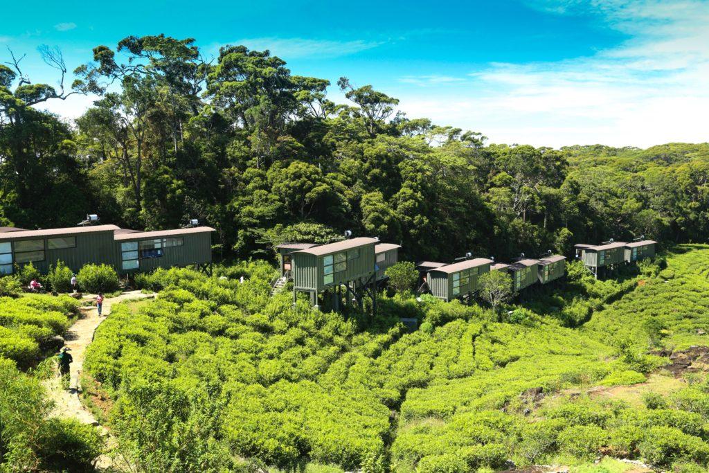 Sri Lanka - Deniyaya - 1567 - Rainforest Ecolodge