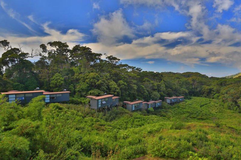 Sri Lanka - Deniyaya - 1567 - Rainforest Eco Lodge - Ariel View
