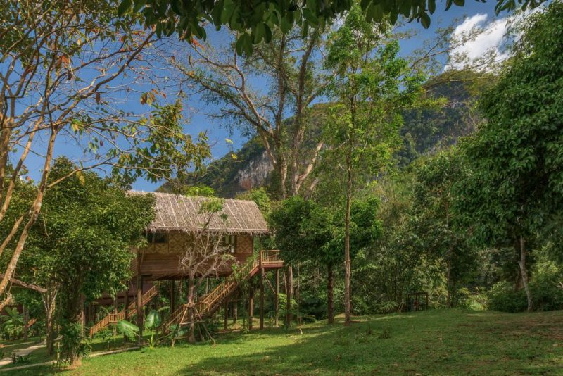 Thailand - Khao Sok - 18264 - Lodge Exterior