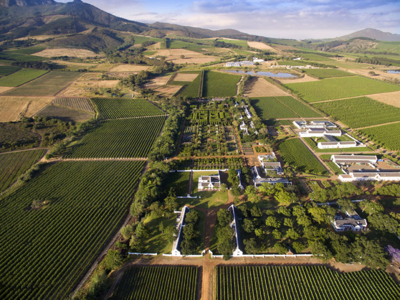 South Africa - 4948 - babylonstoren - aerial