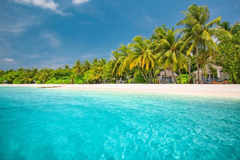 Maldives - South Ari Atoll - 1567 - Lux* South Ari Atoll Beach and Turquoise sea