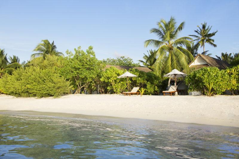 Maldives - South Ari Atoll - 1567 - Lux* South Ari Atoll - Beach Pavilion Beach Front