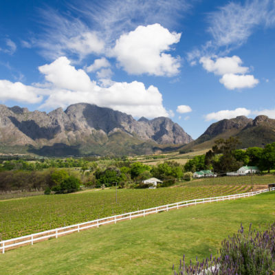South Africa Cape, Winelands and Safari