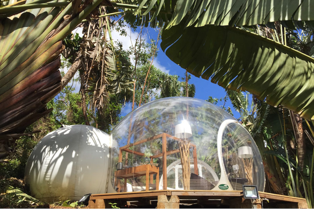 Mauritius - South Coast - 3996 - Bubble Lodges exterior