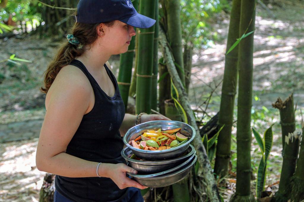 Feeding Lemurs on Volunteer Project