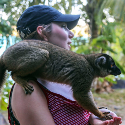Lemur Conservation Project in Madagascar, Nosy Be