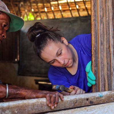 Construction and Renovation Project in Madagascar, Nosy Be
