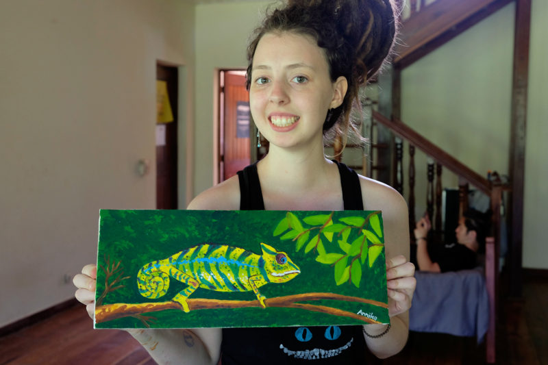 Painting Session on Madagascan Wildlife