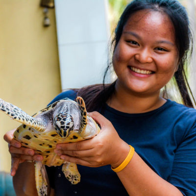 Bali Turtle Conservation Project in Indonesia, Nusa Penida