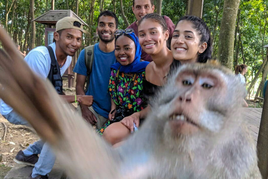 Inquisitive Monkey in Bali