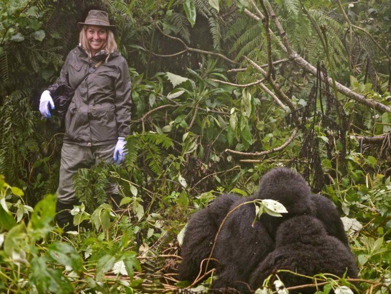 Rwanda - Volcanoes National Park - 1568 - Sabyinyo Silverback Lodge gorillas