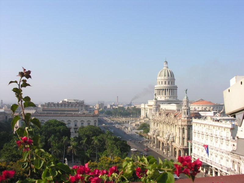 Havana - Capitolio, Park, Cuban, Flora, Occidental Region