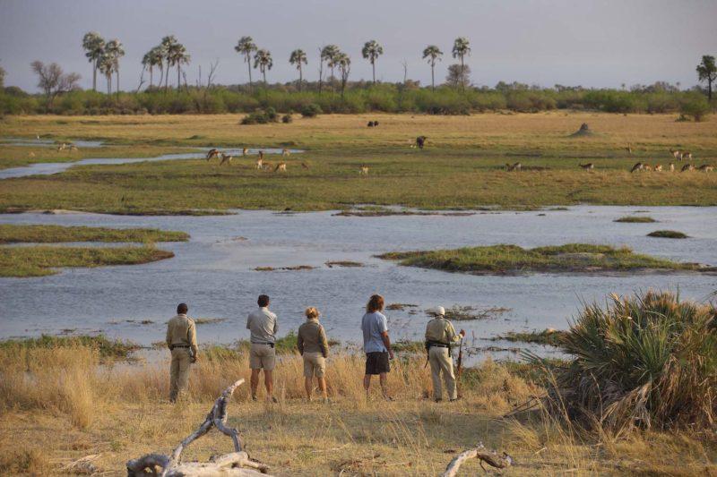 andBeyond Sandibe Okavango Safari Lodge - Walking