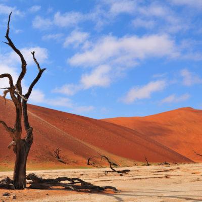Privately Guided Namibian Safari – Value