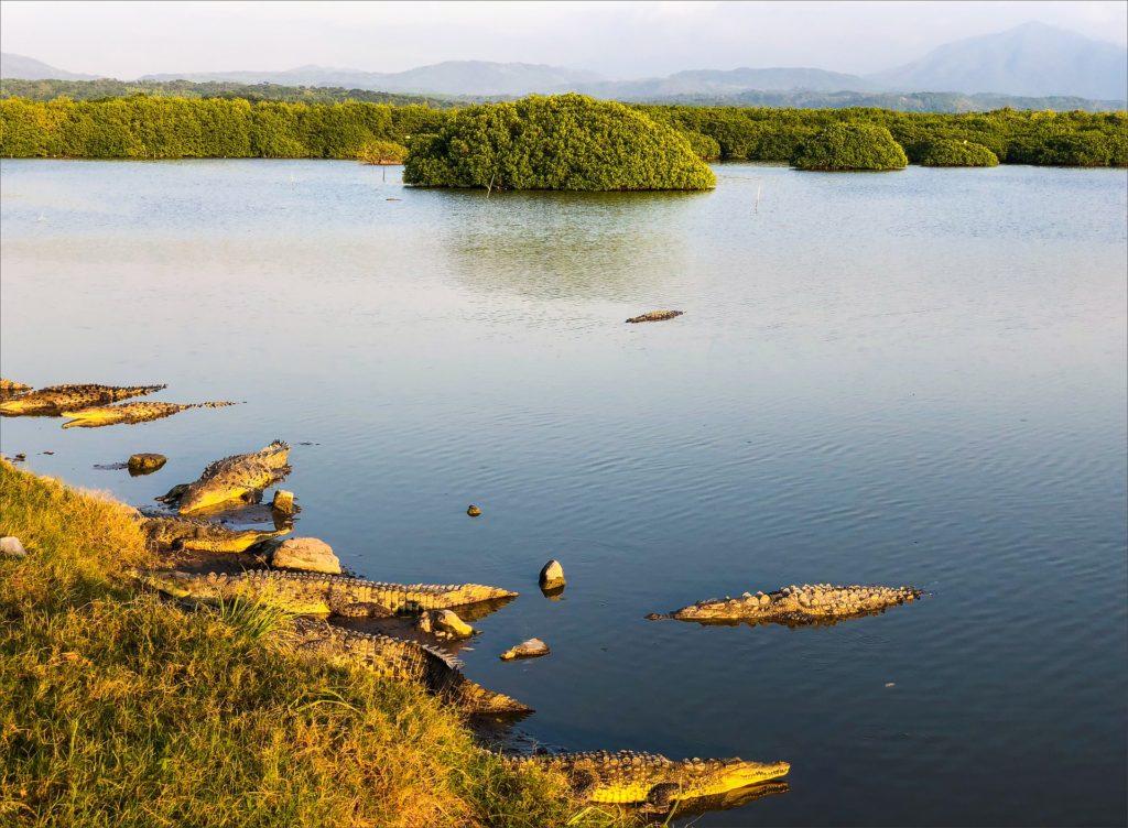 Dominican Republic - Crocodile Lake