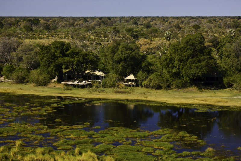 Zarafacamp - Conservation