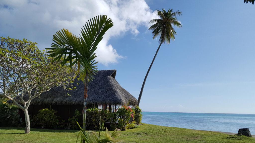 French Polynesia - Tahiti - 1572 - Hotel Hibiscus sea view