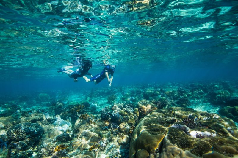 Azura Benguerra Island - Diving