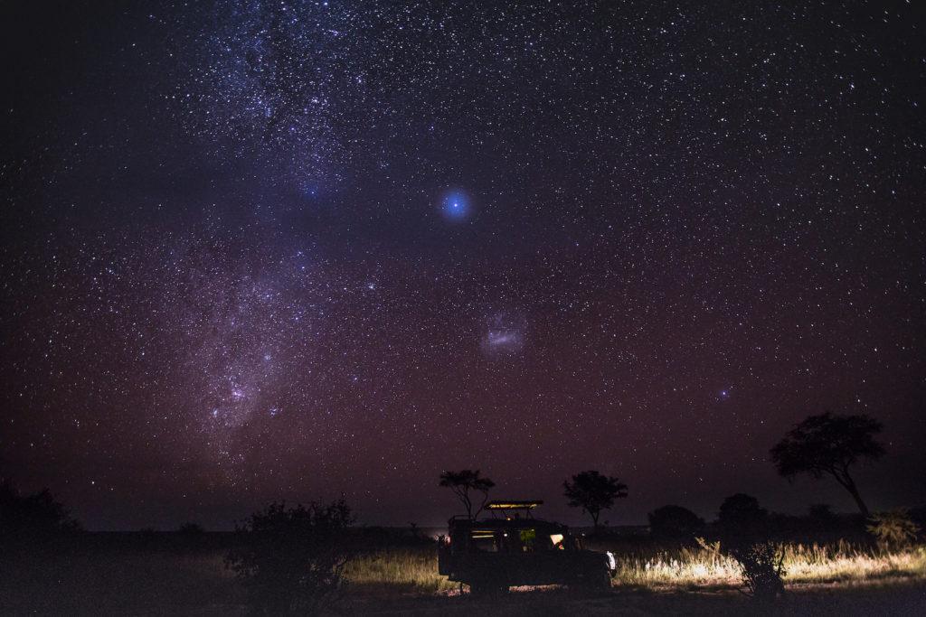 Elewana Tarangire Treetops - Star Gazing