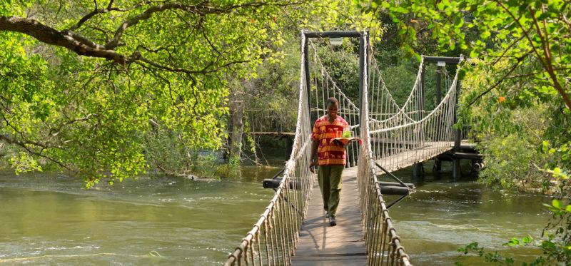 Sanctuary Sussi and Chuma - Swinging Bridge