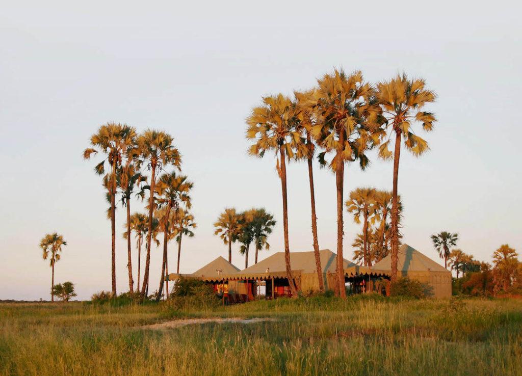 Jack's Camp - Mess Tent At Sunset