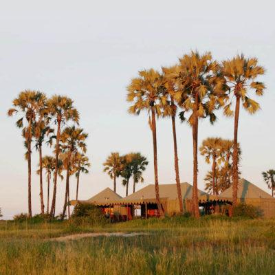 The Best of Botswana