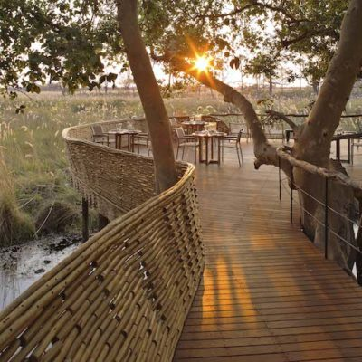 Experience Chobe and Delta Safari – Sandibe