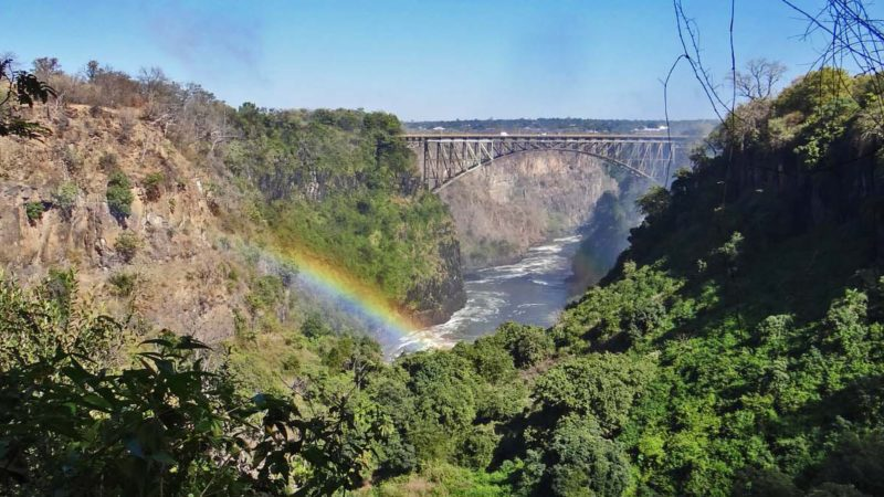 Zambia - Livingston - 1564 - Royal Chundu Zambezi River Lodge